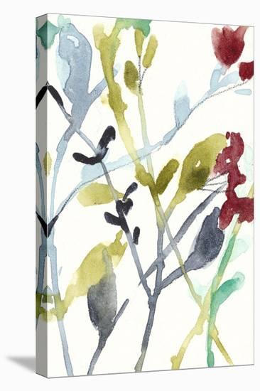 Abundant Flowers II-Jennifer Goldberger-Stretched Canvas Print