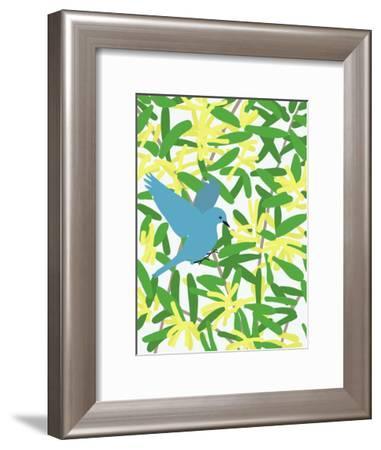 Acacia And Mountain Bluebird-Jorey Hurley-Framed Art Print