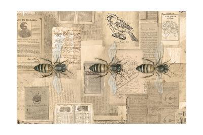 Academic Bee Illustration-Brenna Harvey-Premium Giclee Print