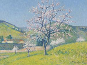 Arbres en Fleur a Alet-les-Bains, 1924 by Achille Lauge