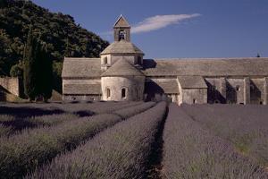 Abbaye Notre-Dame De Senanque, Gordes - Provence, France by Achim Bednorz