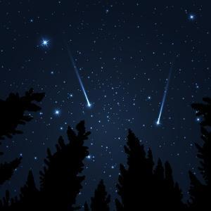 Galaxy with Framed with Pine Trees. Night Sky and Shooting Stars. Milky Way. Vector Illustration by acid2728k