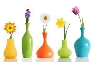 Spring Flowers In Vases Isolated On White by Acik