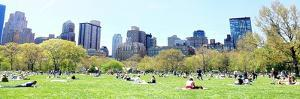 Central Park Picnic by Acosta