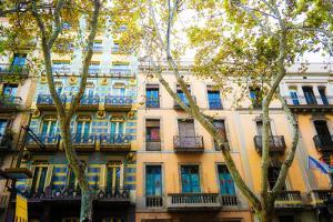 Dream Street by Acosta