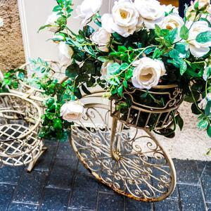 Flower Bike Square by Acosta