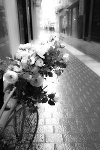 Flower Bike by Acosta