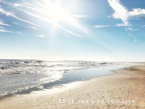 Love The Life You Live by Acosta