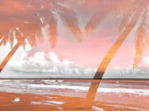 Two Superimposed Palms by Acosta