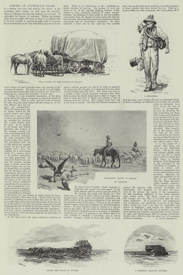 Across an Australian Plain-J. Macfarlane-Giclee Print