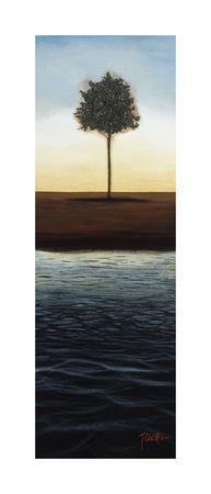 https://imgc.artprintimages.com/img/print/across-the-water-ii_u-l-f5mcpw0.jpg?p=0