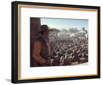 "Actor John Wayne During Filming of Western Movie ""The Undefeated""-John Dominis-Framed Premium Photographic Print"