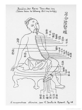 https://imgc.artprintimages.com/img/print/acupuncture-the-meridian-of-the-loins_u-l-ow57s0.jpg?p=0