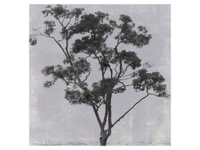 Adajio 45--Art Print
