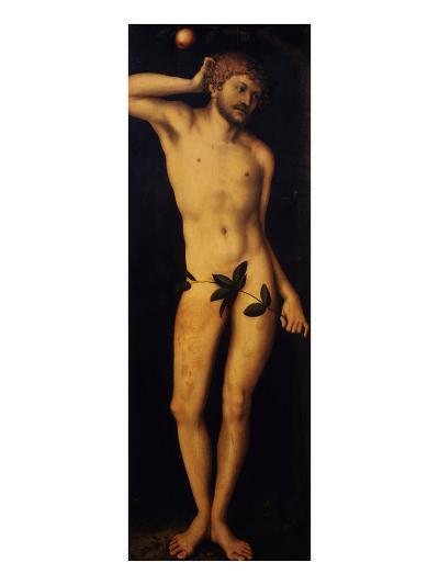 Adam, 1528-Lucas Cranach the Elder-Giclee Print