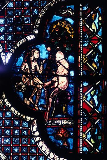 Adam and Eve, Stained Glass, Chartres Cathedral, France, 1205-1215--Photographic Print