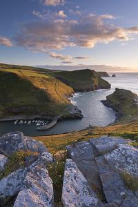 Boscastle Harbour from the Coast Path, Cornwall, England. Summer (August) by Adam Burton