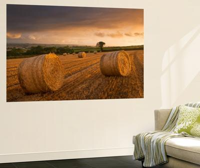 Hay Bales in a Ploughed Field at Sunset, Eastington, Devon, England. Summer (August)