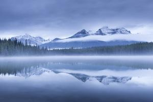 Misty morning at Herbert Lake in the Canadian Rockies, Banff National Park, Alberta, Canada. Autumn by Adam Burton
