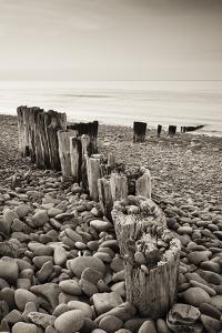 Weathered Wooden Groyne on Bossington Beach at Sunset, Exmoor National Park, Somerset by Adam Burton