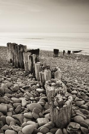 Weathered Wooden Groyne on Bossington Beach at Sunset, Exmoor National Park, Somerset