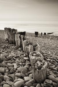 Weathered Wooden Groyne on Bossington Beach at Sunset, Exmoor National Park, Somerset by Adam Burton
