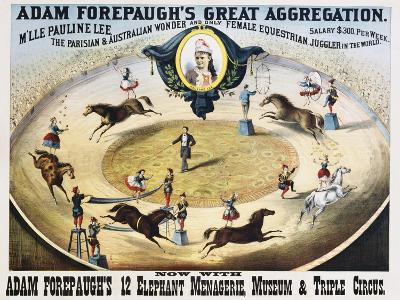 Adam Forepaugh's Great Aggregation Poster--Giclee Print