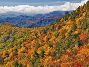 Appalachian Mountains in Autumn by Adam Jones