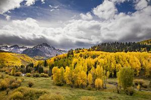 Autumn aspen trees and Sneffels Range, Mount Sneffels Wilderness, Colorado by Adam Jones