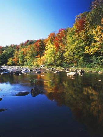 Autumn Trees Reflected in Deerfield River, Vermont, USA