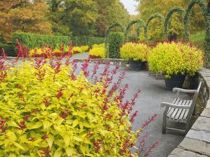 Autumn View of Longwood Gardens, Pennsylvania, Usa by Adam Jones