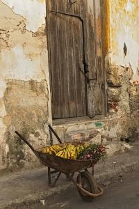 Bananas in Wheelbarrow, Havana, Cuba by Adam Jones