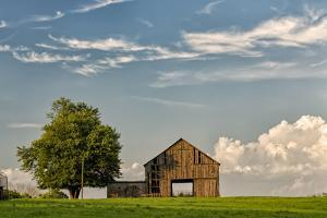 Barn in afternoon light, Kentucky by Adam Jones