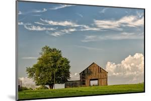Barn in afternoon light, Kentucky by Adam Jones