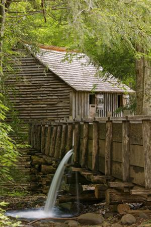 Cable Mill, Cades Cove, Great Smoky Mountains National Park, Tennessee by Adam Jones