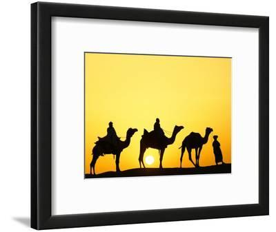 Camels and camel driver silhouetted at sunset, Thar Desert, Jodhpur, India