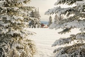 Classic red barn and snow scene, Kalispell, Montana by Adam Jones