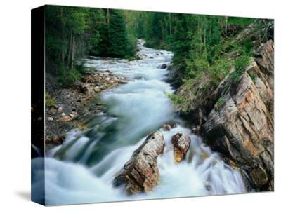 Crystal River, Gunnison National Forest, Colorado, USA