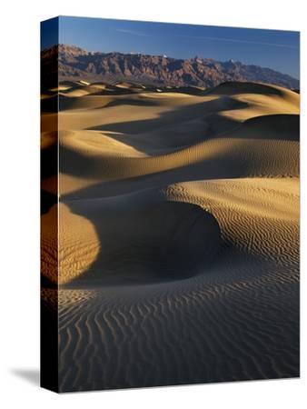 Desert Dunes, Death Valley National Park, California, USA