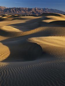 Desert Dunes, Death Valley National Park, California, USA by Adam Jones