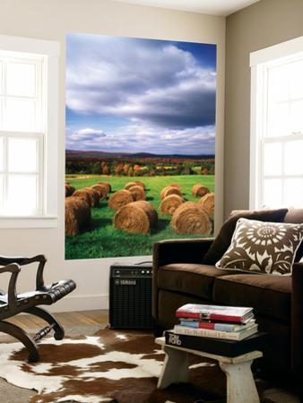 Farm Hay Bales in Field, Westmore, Vermont, USA