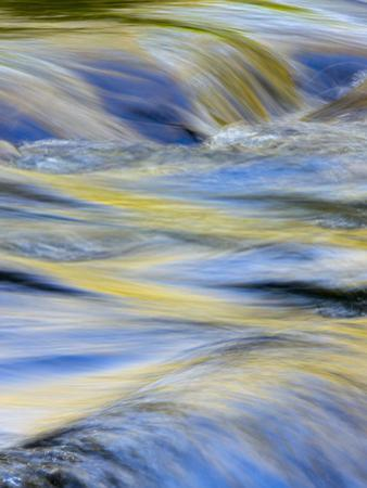 Flowing Water and Spring Colors Reflected on Stream, Tennessee