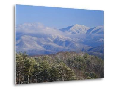 Forest with Snowcapped Mountains in Background, Great Smoky Mountains National Park, Tennessee