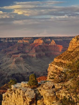 Grand Canyon From the South Rim at Sunset, Grand Canyon National Park, Arizona, USA by Adam Jones