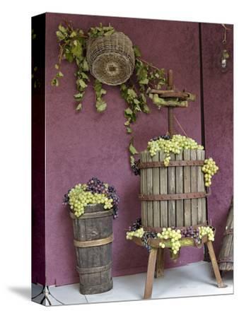 Grape Exhibit, La Festa Dell'Uva, Impruneta, Italy, Tuscany