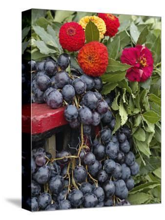 Grapes and Flowers, La Festa Dell'Uva, Impruneta, Italy, Tuscany