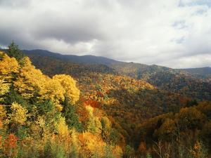Great Smoky Mountains National Park in Autumn from Thomas Ridge, North Carolina, USA by Adam Jones