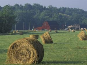 Hay Bales and Red Barn, Greenup, Kentucky, USA by Adam Jones