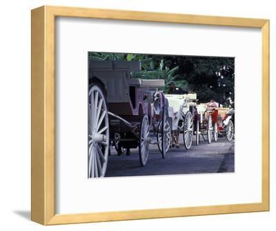 Horsedrawn Carriage at Jackson Square, French Quarter, Louisiana, USA