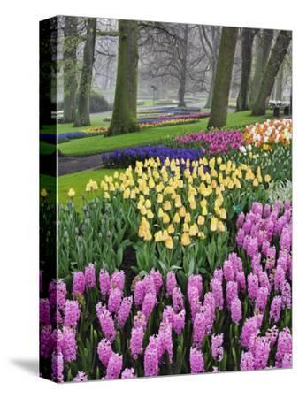 Hyacinth and tulip flowers, Keukenhof Gardens, Lisse, Netherlands